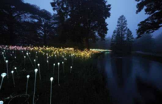 Instalaciones mágicas de Bruce Munro transforman los jardines en un paisaje iluminado