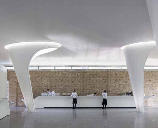 Una galería con forma de serpentina se vuelve una con la naturaleza gracias a su iluminación