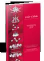Catalogo Novedades 2017 | Iluminación.net