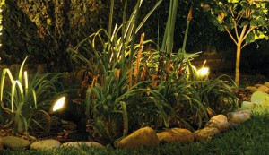 FW Iluminación3066