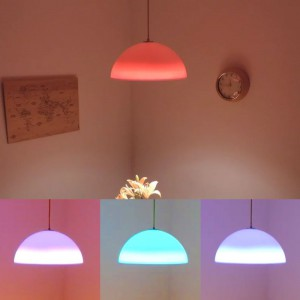 Lámpara Bioluz | Colgante Chamaleon