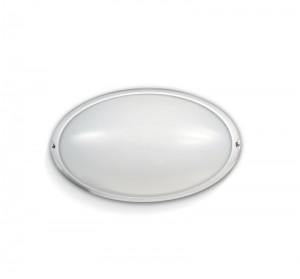 Eclipse Iluminación9005 - Tortugas