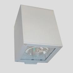 Lámpara Punto Iluminación | Neo - AP NEI AR111 250