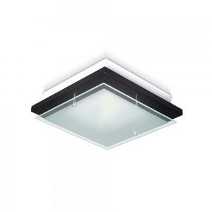 JS IluminaciónSquare - PWS25/2