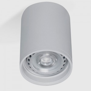 Lámpara Punto Iluminación | Plafón Tuba PAR 30 LED - PL TU PA30